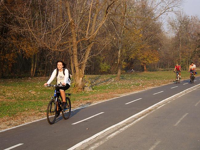 Ада Циганлия. Велосипедная дорожка на острове