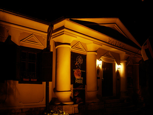 Музей естествознания вечером