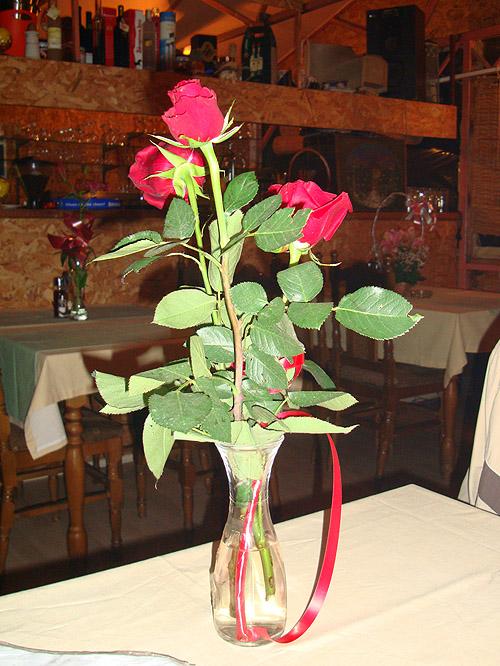"""Кафана """"Любица"""" — свежие цветы на столах"""