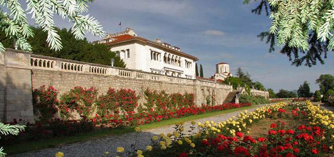 Старый Дворец в Дедине